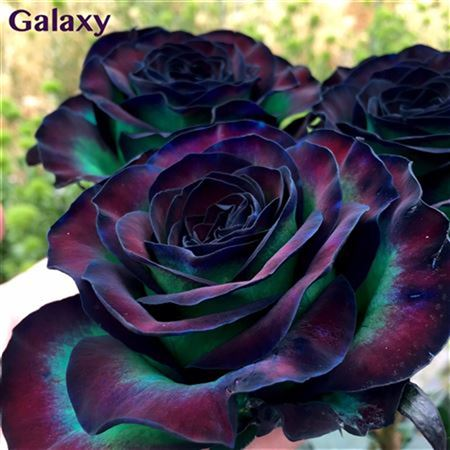 R Gr Galaxy