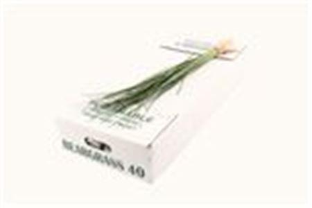 Dec Bunch Beargrass X40
