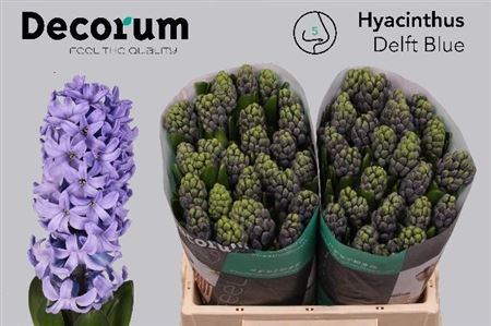 Hyac Delft Blue Decorum