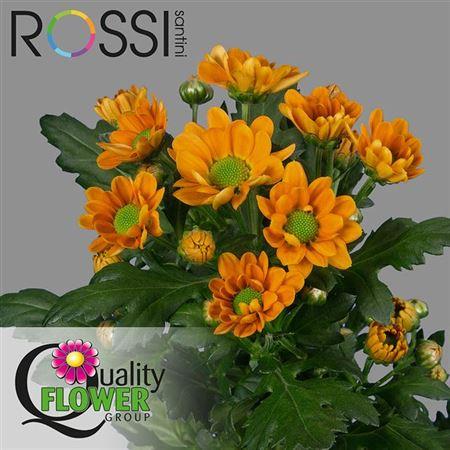 Chr Sant Rossi Orange